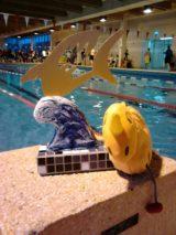 Sieg beim Pokalwettkampf der Berliner Haie